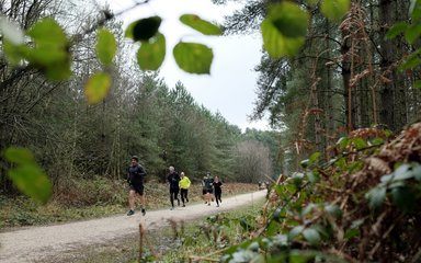 Sherwood Pines Running 5k