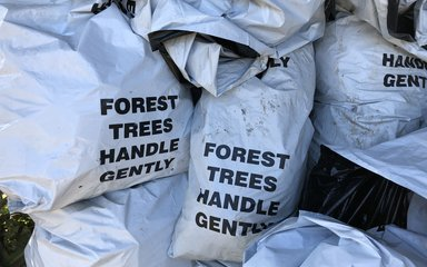 Bags of tree saplings