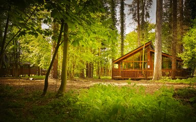 Forest Holidays cabins at Thorpe Forest