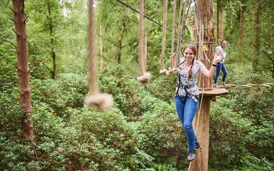 Go Ape tree top adventure crossing