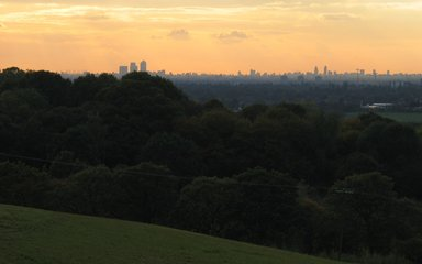 Orange sunset over distant London skyscrapers with dark trees in the foreground