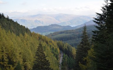 View of Whinlatter Forest, looking out from a high vantage point across peaks and valleys