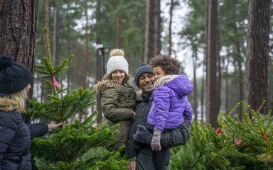 Family shopping for Christmas trees in the forest