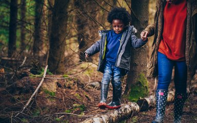 Kid walking along trunk log holding parent's hand