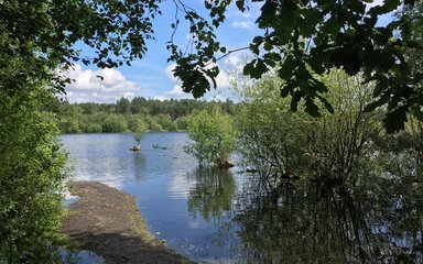 Blakemere lake with leaves from trees around the edge of the picture