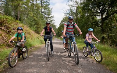 Family cycling on forest trail