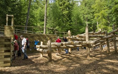 Whinlatter forest play area