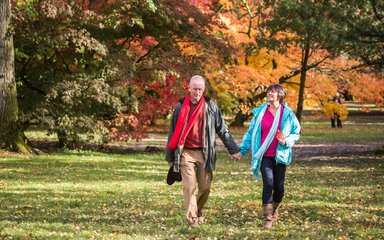 Couple walking through Westonbirt during Autumn colour