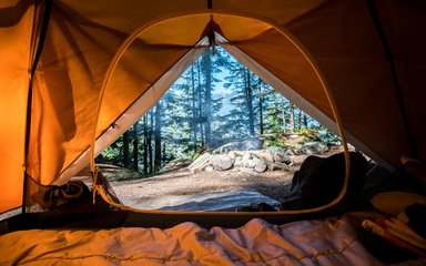 Open tent door with view out into pine forest