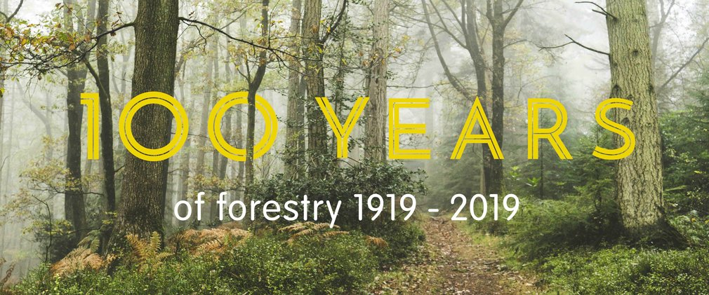 100 years of forestry 1919-2019