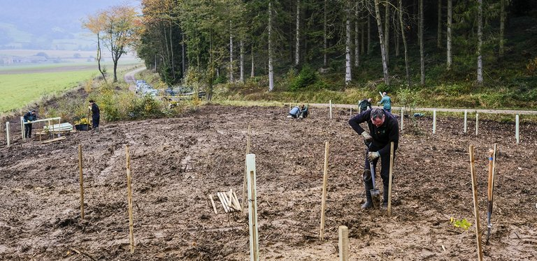 Man shoveling soil in muddy area next to forest