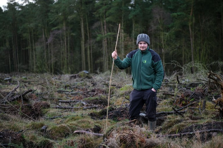 Tree planter stood in mossy land holding a stick