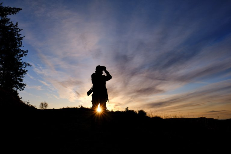 Silhouette of forest worker looking through binoculars with sun setting behind them