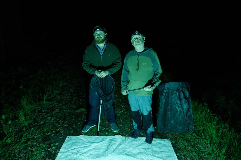 Two men at night moth trapping